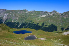 Twee die bergmeren met alpiene weiden en altijdgroen bos worden omringd stock afbeeldingen