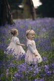 Twee die kinderen in een hout met de lenteklokjes wordt gevuld Stock Afbeeldingen