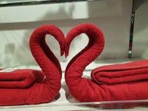 Twee die zwanen van handdoeken worden gemaakt die hart vormen stock afbeeldingen