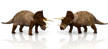 Twee dinosaurussen royalty-vrije illustratie