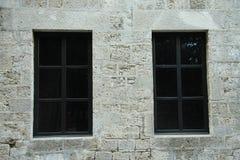 Twee donkere vensters Stock Foto