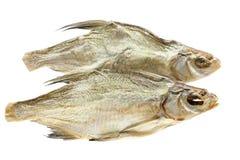 Twee droge vissen Stock Afbeeldingen