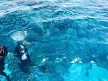 Twee duikers in zwart vrij duiken past, een man en een vrouw met de gootsteen van zuurstofflessen onder het transparante blauwe w stock foto