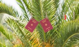 Twee Duitse paspoorten die op waslijnen hangen Royalty-vrije Stock Fotografie