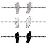 Twee duiven op een draad Royalty-vrije Stock Foto's