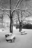 Twee eenzame banken die in sneeuw worden behandeld Stock Afbeelding