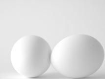 Twee eieren Stock Afbeeldingen