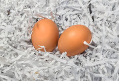 Twee eieren in de stapel van gescheurde document beetjes Stock Afbeeldingen