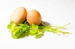 Twee eieren op een blad van Parshley Stock Afbeelding
