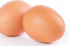 Twee eieren op witte achtergrond Stock Foto's