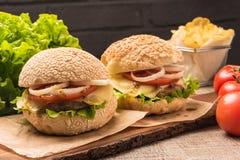 Twee eigengemaakte vegetarische burgers Stock Foto's