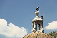 Twee eksters op het dak van een kasteel royalty-vrije stock afbeelding