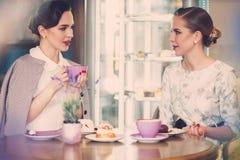 Twee elegante jonge dames in een koffie stock foto's