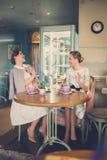 Twee elegante jonge dames in een koffie royalty-vrije stock foto's