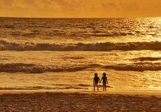 Twee en zonsondergang Stock Foto's