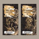 Twee etiketten met Zoete iris en namen geranium op zwarte toe Stock Afbeeldingen