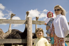 Twee families Royalty-vrije Stock Foto