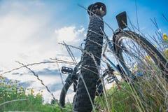 Twee fietsen in gras onder blauwe hemel, achterwielclose-up royalty-vrije stock foto