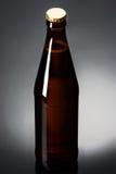 Twee flessen bier op een weerspiegelende oppervlakte Stock Fotografie