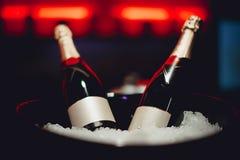 Twee flessen champagne in een emmer Royalty-vrije Stock Foto's