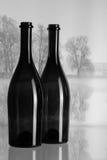 Twee flessen en de herfstlandschap in de mist Royalty-vrije Stock Foto's