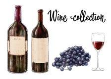 Twee flessen rode die wijn met een glas en druivencluster op witte achtergrond wordt geïsoleerd Wijninzameling Vector illustratie Stock Fotografie
