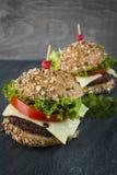 Twee gastronomische hamburgers Royalty-vrije Stock Afbeelding