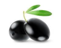Twee geïsoleerde zwarte olijven stock afbeeldingen