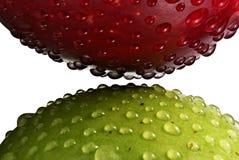 Twee geïsoleerdeh appelen, van aangezicht tot aangezicht -. Royalty-vrije Stock Afbeeldingen