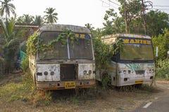 twee gebroken verlaten vuile witte Indische die bussen met installaties met groen klimop en mos worden overwoekerd royalty-vrije stock afbeeldingen