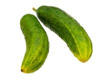 Twee gehele komkommers Royalty-vrije Stock Foto