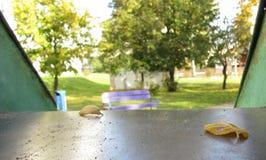 Twee gele bladeren op een glijbaan royalty-vrije stock afbeeldingen