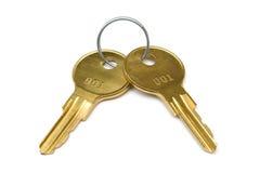 Twee gele sleutels op ring Stock Afbeeldingen