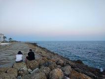 Twee geliefde gies de zonsondergang royalty-vrije stock foto
