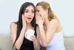 Twee gelukkige en koffie of thee spreken drinken en vrienden die roddelen Royalty-vrije Stock Fotografie