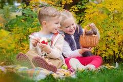 Twee gelukkige jonge geitjes in een de herfstpark bij een picknick royalty-vrije stock foto's