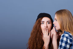 Twee gelukkige jonge meisjes die geheimen vertellen Meisje Stock Foto's