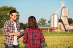 Twee gelukkige jonge vrouwelijke en mannelijke landbouwers of agronomen die in een tarwe gebied, het raadplegen en het bespreken  stock foto