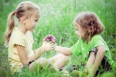 Twee gelukkige kinderen die dichtbij de boom in de dagtijd spelen Royalty-vrije Stock Foto