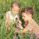 Twee gelukkige kinderen die in park spelen Royalty-vrije Stock Afbeeldingen