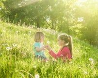 Twee gelukkige kleine zusters op het gebied Royalty-vrije Stock Foto's