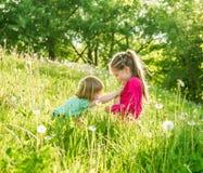 Twee gelukkige kleine zusters op het gebied Stock Afbeelding