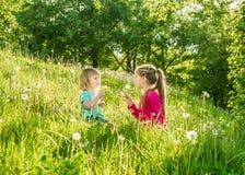 Twee gelukkige kleine zusters op het gebied Royalty-vrije Stock Afbeeldingen
