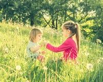 Twee gelukkige kleine zusters op het gebied Stock Afbeeldingen