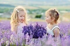 Twee gelukkige meisjes op gebied royalty-vrije stock afbeeldingen