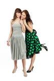Twee gelukkige studentenmeisjes Stock Foto