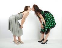 Twee gelukkige studentenmeisjes Royalty-vrije Stock Fotografie