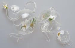 Twee glas transparante omgekeerde theepotten, theepotdekking liggen zij aan zij, binnen zijn grote kamillebloemen, op grijze acht Stock Foto's