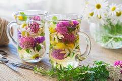 Twee glaskoppen van gezond aftreksel Geneeskrachtige kruiden op lijst stock foto