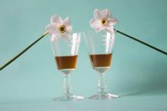 Twee glazen cognac of brandewijn en witte gele narcissen op neutral Stock Afbeelding